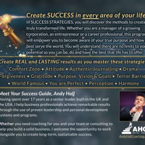 Andy Hall Success Strategies 2